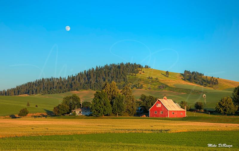 Moonrise on the Farm  7013 w51