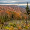 Autumn Highway 4579 w46