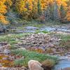 Tea Creek in Autumn 4657 w46