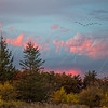 Dolly Sods Sundown 2768 w46