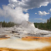Yellowstone Geyser  8443  w1