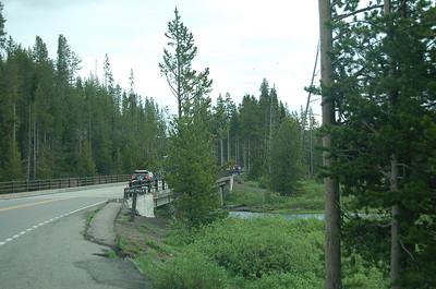 Yellowstone NP, landschap en wildlife