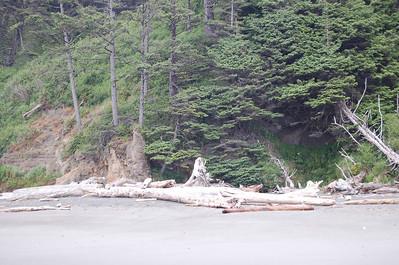 Olympic NP 2006 Beach