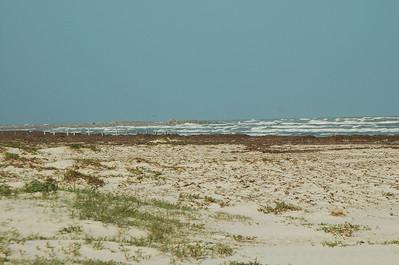 Mustang Island SP 2008