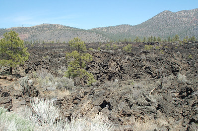 Sunset Crater Volcano NM 2008
