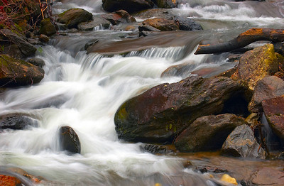 Amicalola Falls 5