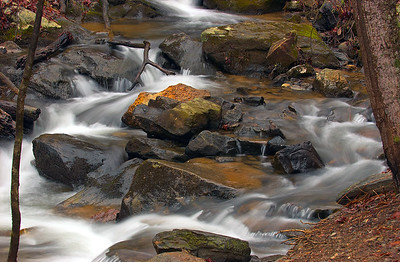 Amicalola Falls 10