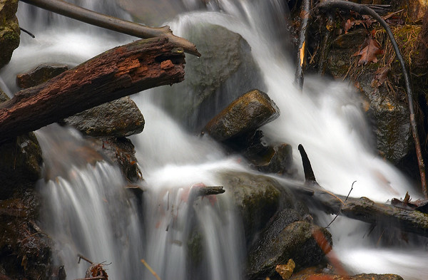 Amicalola Falls 21