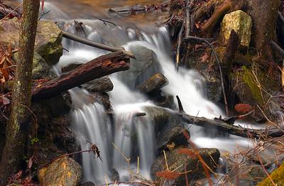 Amicalola Falls 23