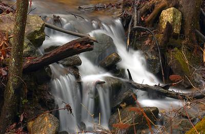 Amicalola Falls 22
