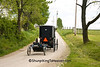 Amish Buggy and Cart, Holmes County, Ohio