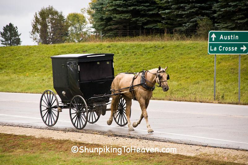 Amish Horse and Buggy, Winona County, Minnesota