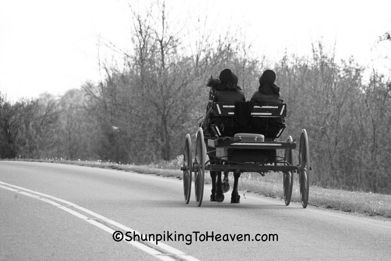 Amish Women Heading to Town, Guernsey County, Ohio
