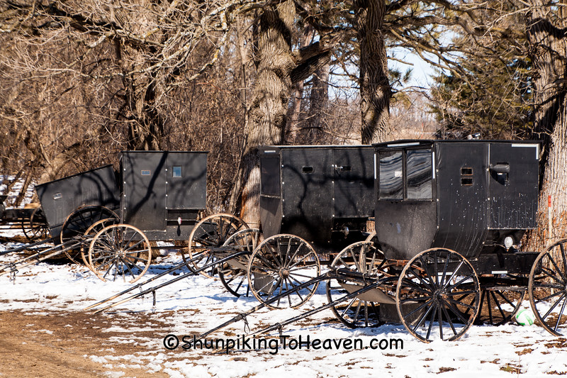 Buggies at Amish School, Marquette County, Wisconsin