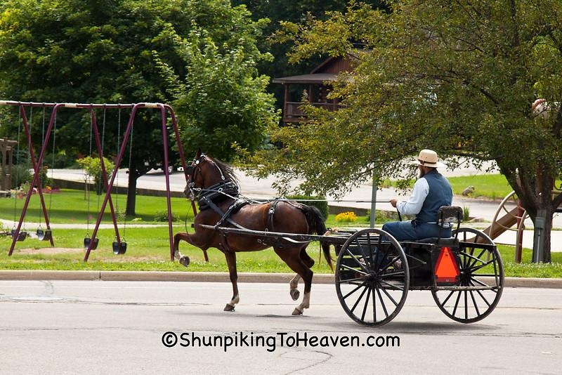 Amish Traveler, Green Lake County, Wisconsin