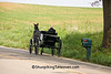 Amish Buckboard Wagon, Holmes County, Ohio
