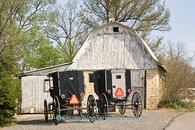 Amish Buggies, Holmes County, Ohio