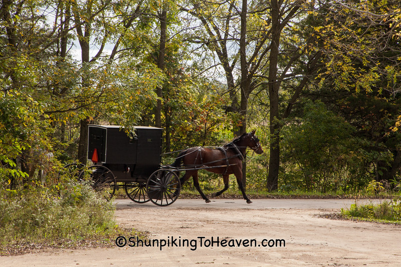 Amish Buggy, Columbia County, Wisconsin
