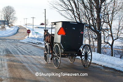 Amish Buggy in Winter, Vernon County, Wisconsin