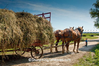 Load of Loose Hay on Amish Farm, Vernon County, Wisconsin