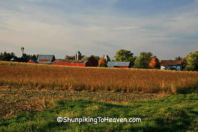 Amish Farm in Autumn, Vernon County, Wisconsin