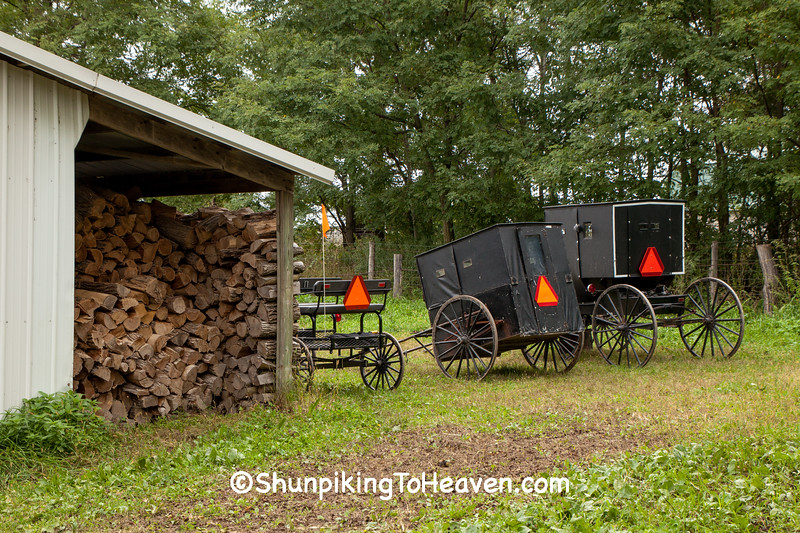 Buggies at Amish School, Columbia County, Wisconsin