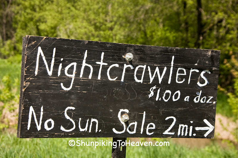 Amish Sale Sign for Nightcrawlers; Vernon County, Wisconsin