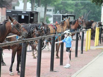 Horse whisperer in LaGrange on Saturday