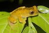 Biodiversity Group, DSC01103