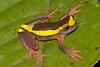 Biodiversity Group, DSC00466