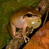 Biodiversity Group, _DSC0309