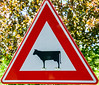 Check out the feet on this cattle crossing sign.