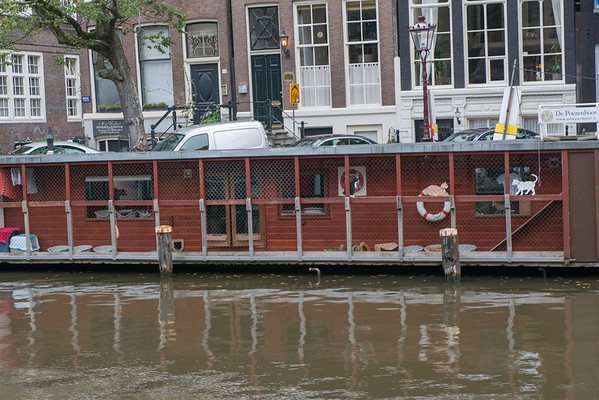 Visit The Cat Boat (De Poezenboot), the world's only floating cat shelter