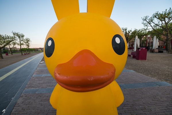 Miffy Ducky by Florentijn Hofman (Miffy Art Parade)