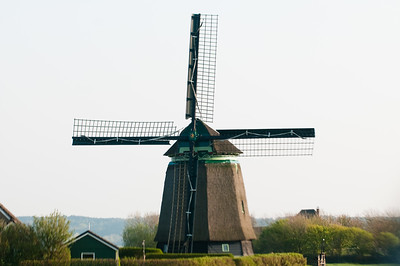 DanHelder Tulip Fields OLd Original Windmill