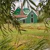 Wooden Green Dutch House