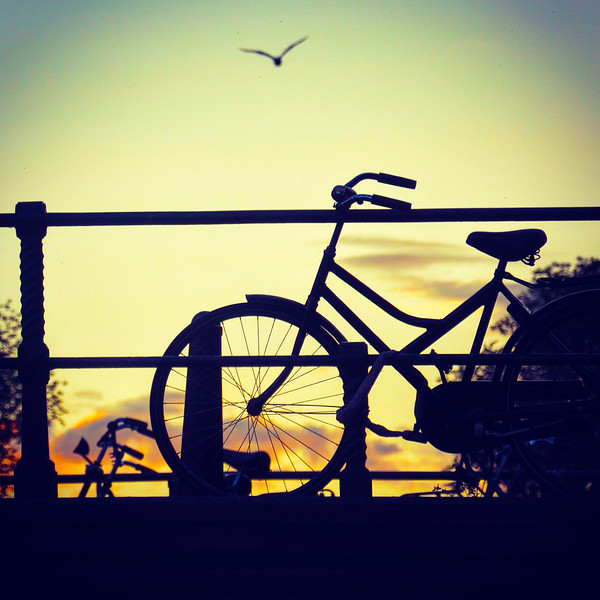 Bicycle on bridge at sunset. 2016.
