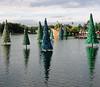 Lake of trees at Sea World