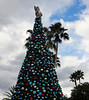 Sea World's Christmas tree