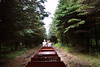 Little A-Merrick-A - riding the train through the woods - the train route runs 3-1/2 miles