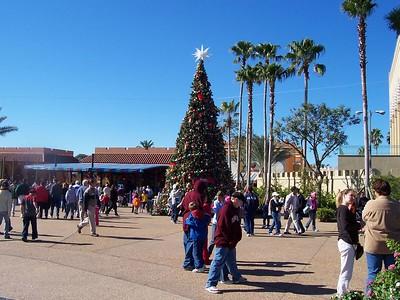December 27 update pictures