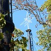 A closer look at the star on top of the SDC tree.  Nothing like this was in any of the Disney displays.