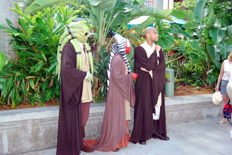 The jedi council, Mace Windu, Kit Fisto and Shaak Ti