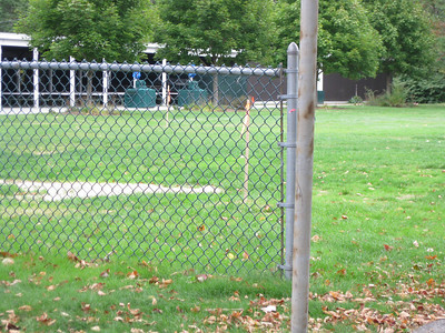 There were constuction markers set up in the ballfield, in prepration for a proposed new roller coaster.