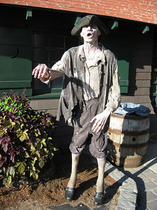 Colonial zombie.