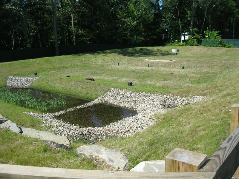 Detention pond adjacent to the new parking lot.