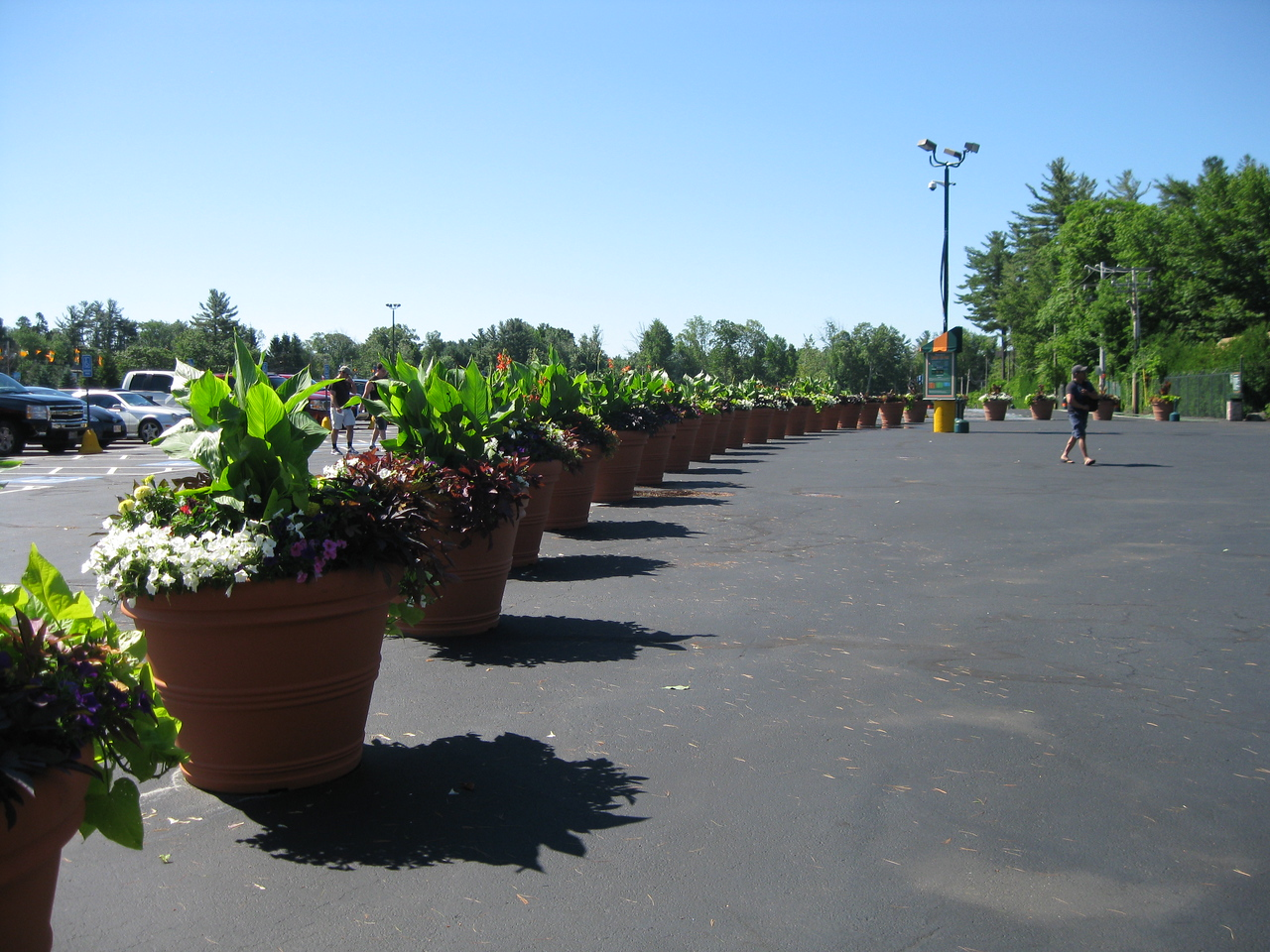 Planters used to block traffic from getting close to the entrance.