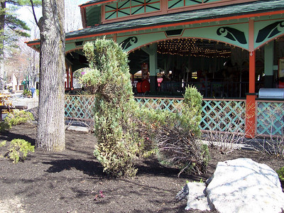 Topiary next to the Carousel.