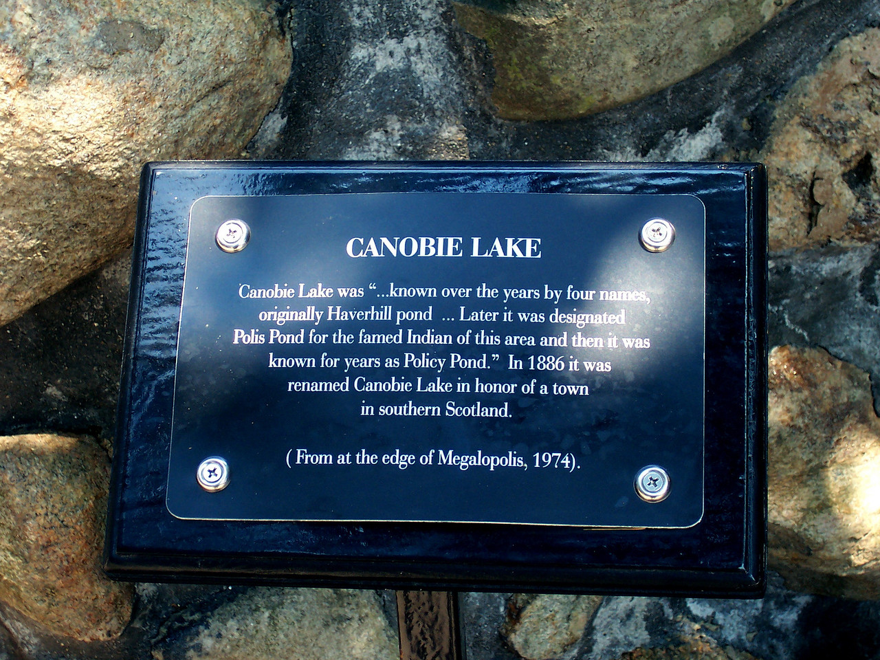 There seemed to be new signs like this throughout the park, with tree names and historical facts.