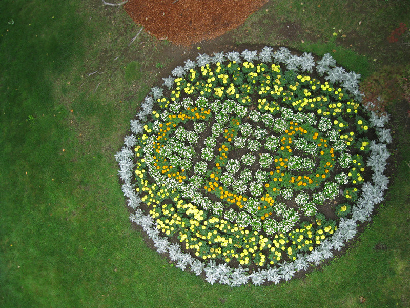 A hidden CLP at the park. This flower bed's design can only be seen from above, from the Sky Ride.